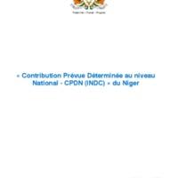 Niger-INDC-versionfinale.pdf